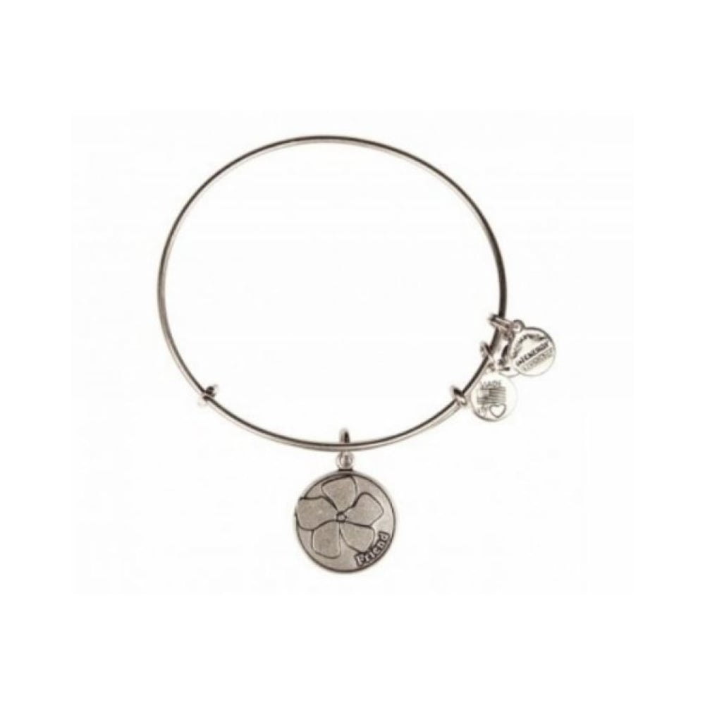 Alex And Ani Because I Love You Friend Charm Bangle A12eb51rs