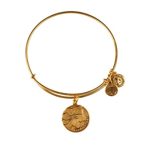 Alex and Ani Because I Love You Grandmother Charm Bangle A12EB44RG