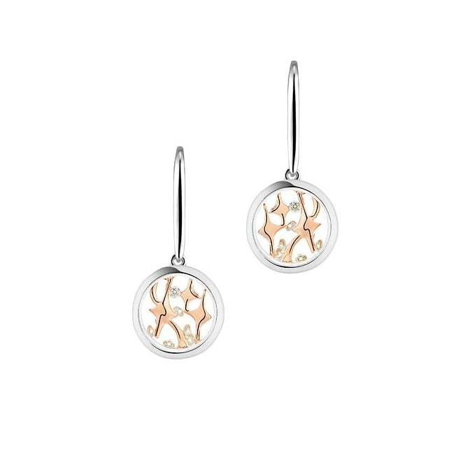 Astra Jewellery Sterling Silver Compass Star Earrings MYE007S/RG
