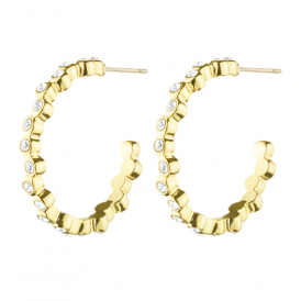Dyrberg/Kern Jennifer Crystal Earrings 343238