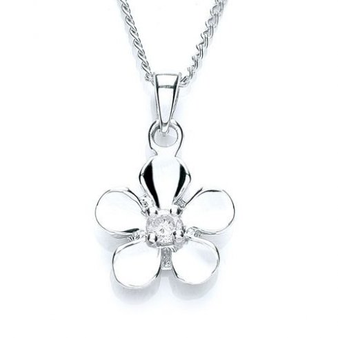 Purity 925 SILVER PENDANT & CHAIN